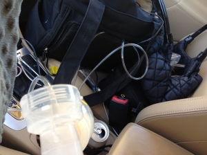 Pumping breastmilk in the car is the least glamorous thing in the world.